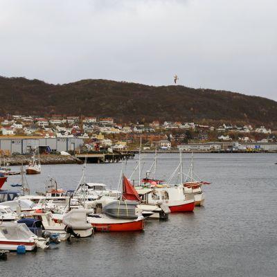 Skjervøy i Nordnorge
