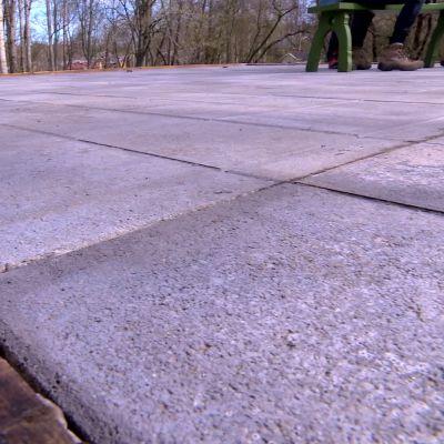 Växthusets betonggolv.