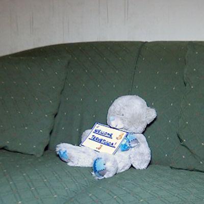 Nalle sohvalla