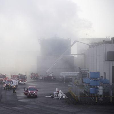 Pirkanmaan pelastuslaitos sammuttamassa tehdaspaloa Sastamalassa sunnuntaiaamuna.