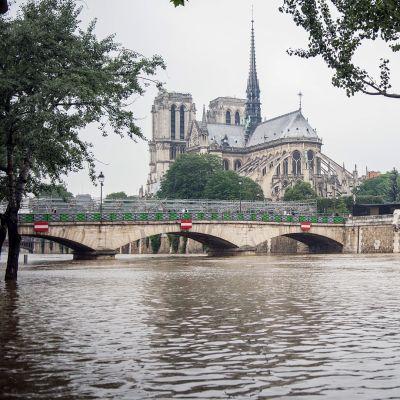 Tulviva Seine-joki Pariisin keskustassa.
