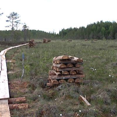 Salamajärven kansallispuiston pitkospuutalkoot rahoitettiin joukkorahoituksella.