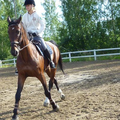 Hevonen ja ratsastaja kentällä.