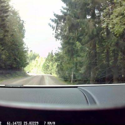 Karhu tien laidassa autokameralla kuvattuna.