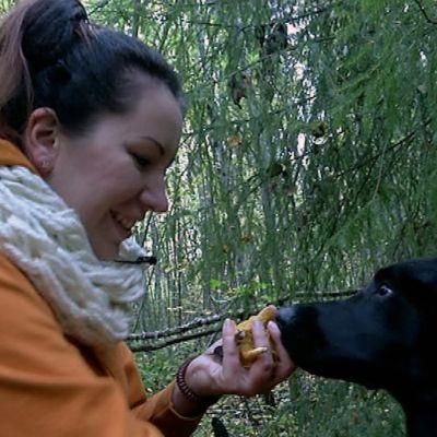 Nainen ja koira sienimetsässä.