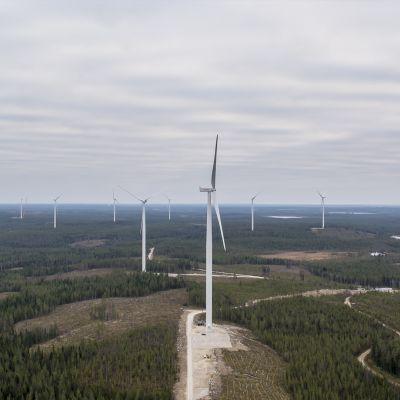 Maisema tuulivoimalasta.