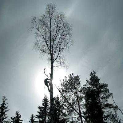 Einari Paakkanen selvittää esikoiselokuvallaan oliko hänen ufo-lapsuutensa totta.