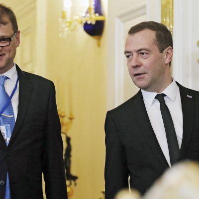 Juha Sipilä ja Dmitri Medvedev tapaavat Pietarissa.