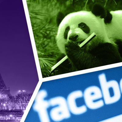 Kuvakollaasi Eiffel-tornista, pandoista ja Facebookin logosta.