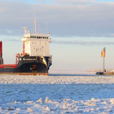 Symphony Sea-laiva saapumassa Kemin Ajoksen satamaan.