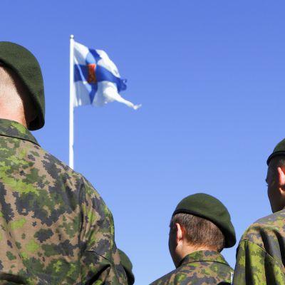 Puolustusvoimien Lippujuhla vuonna 2011