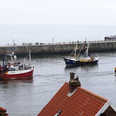 Kalastusaluksia Whitbyn satamassa Pohjois-Englannissa.
