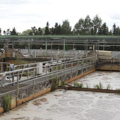 Viinikanlahden jätevedenpuhdistamo jätevesialtaita ja kuohuvaa jätevettä