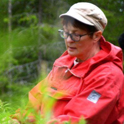 Anne Tuomivaara.