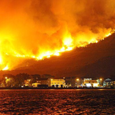 Metsä paloi rajusti Splitin kaupungin lähistöllä sijaitsevassa Podstranan kylässä Kroatiassa 18. heinäkuuta.