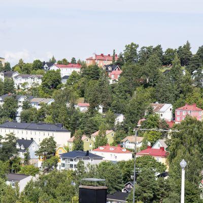 Yle Uutiset Pirkanmaa: Tampereen helmi, Pispala pusikoituu