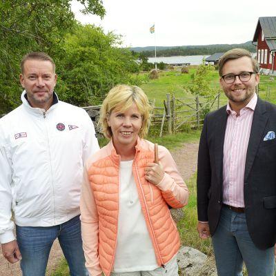 Stefan Wallin, Anna-Maja Henriksson ja Mats Löfström.
