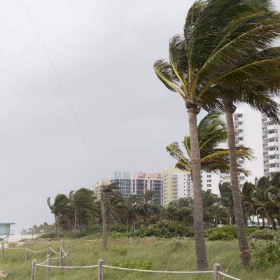 Floridan Miami Beach kuvattuna juuri ennen hurrikaani Irman saapumista 9. syyskuuta.