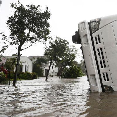 Hirmumyrsky Irma etenee Yhdysvalloissa – Ylen erikoislähetys18:30 alkaen