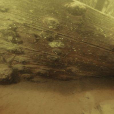 Lappeenrannan Karhusaaren pohjoispuolella oleva hylky.