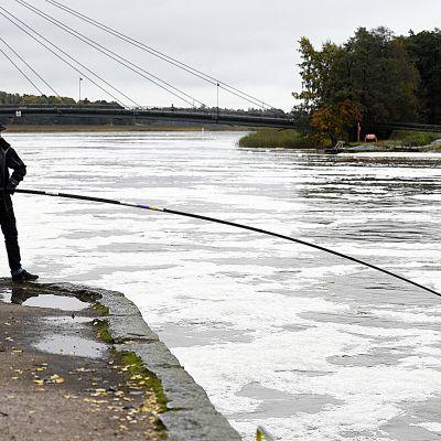 Sateet ovat nostaneet etelärannikon joet monin paikoin tulvakorkeuksiin.