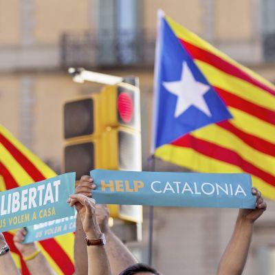 Katalonian lippuja ja mielenosoittajien kylttejä.