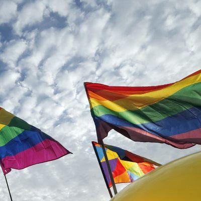 Pietrissa ositetiin mieltä homo- ja transseksuualisten ihmisten oikeuksien puoelsta.