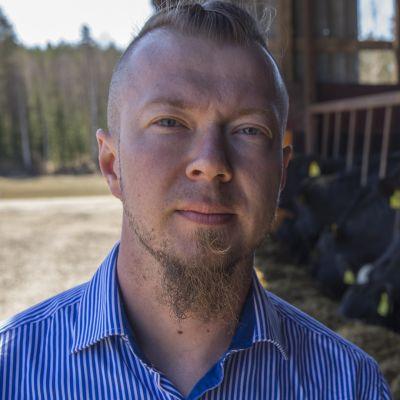 Henrik Kähönen pyörittää pihvikarjatilaa Kuopion Muuruvedellä.