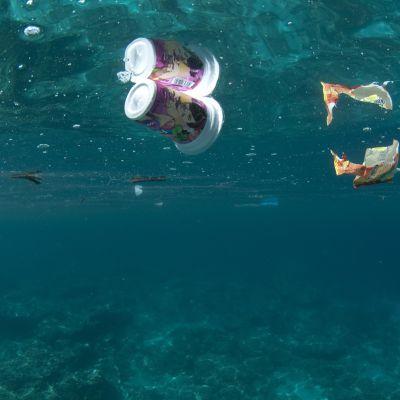 Muuoviroskaa kelluu meressä