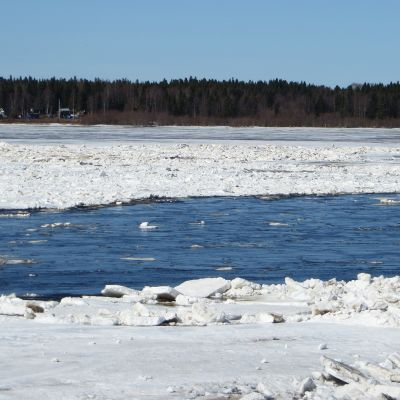 Tornionjoki toukokuussa 2018.