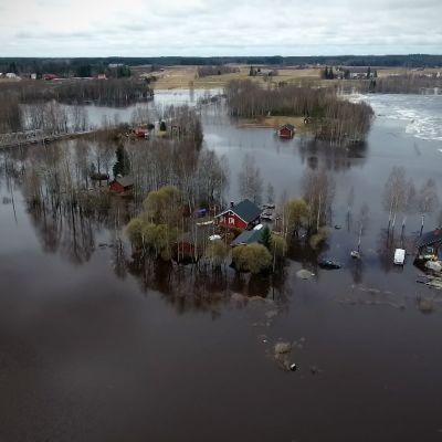 Kuortaneenjärven tulva saattaa nousta ennätyskorkeuteen. Veden ennustetaan nousevan vielä jopa 40 senttiä.