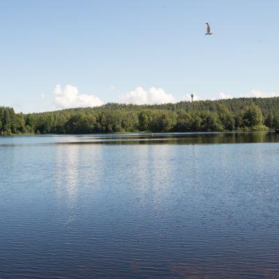 Neulalahden järvimaisemaa.