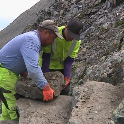 Sherpat rakentavat kivirappuja Duolpagornin rinteeseen Giebmejohkan kurussa Kebnekaisella Pohjois-Ruotsissa 1.8.2018.