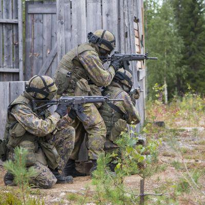 Puolustusvoimat valmiusjoukot armeija varusmies tähtääminen