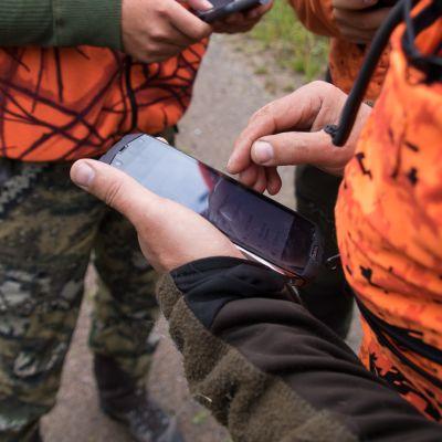 Metsästäjät katsovat puhelimen karttasovelluksesta metsästyskoiran liikkeitä