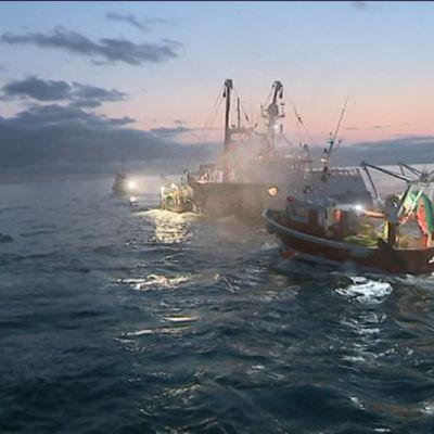 Kampasimpukkakiista Englannin kanaalissa on aaltoillut 15 vuoden ajan mutta kärjistynyt viime vuosina