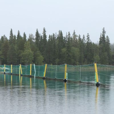 Raatejärven kelluva aita
