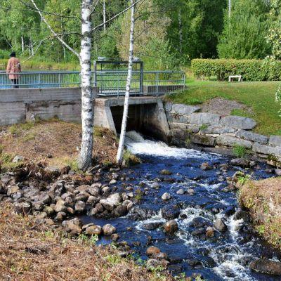 Autiojoessa sijaitsee kolme kalojen vaellusestettä.