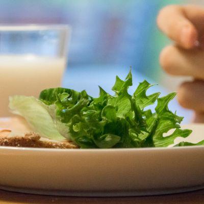 Ruisleipä salaatilla