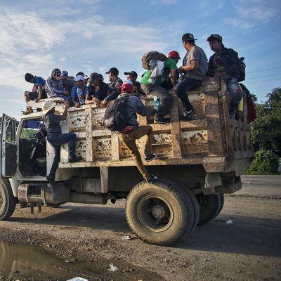 Siirtolaisia avolava-kuorma-autojen kyydissä matkalla Yhdysvaltoihin.