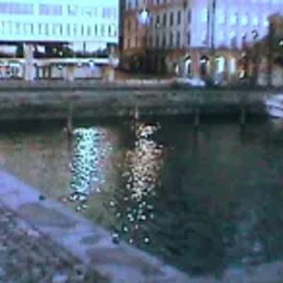 Vironallas Helsingin kauppatorin edustalla