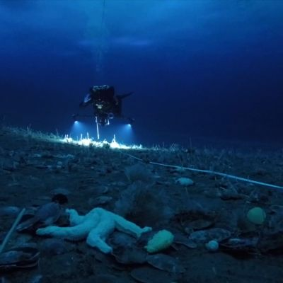 Patrick Pata Degermans expedition dyker på Antarktis.