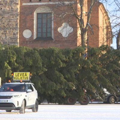 Kuusipuuta kuljetetaan, takana näkyy Turun tuomiokirkko.