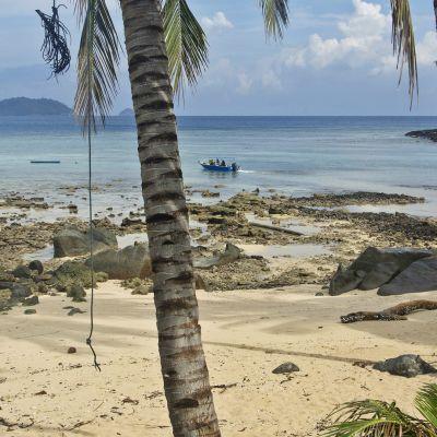 Hiekkaranta Tioman-saarella.