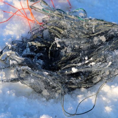 Jäätynyt kalaverkko avannon päällä