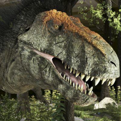 Tyrannosaurus rex on yksi maailman historian kuuluisimmista saalistajista.
