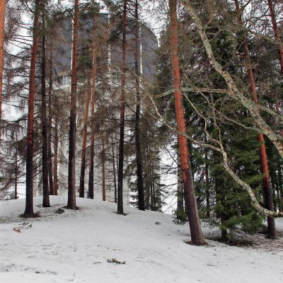 Talvinen puisto vesitorni taustalla