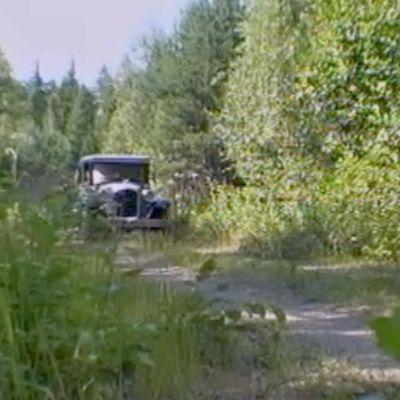 Auto metsäisellä tiellä