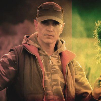 Hamppuviljelijä Timo Haara pitelee hamppukasvia kädessään.