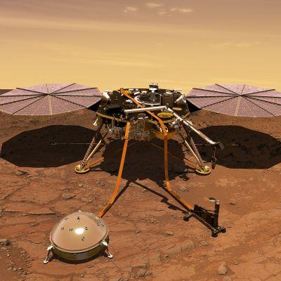 NASAn tuottama 3D-mallikuva InSight-laskeutujasta Marsissa.